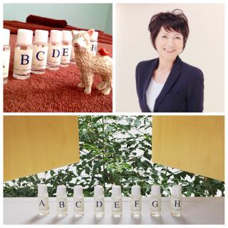 Aromatherapy salon&school 彩心香